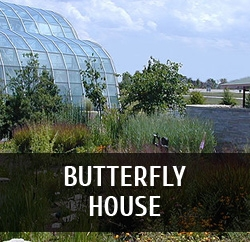featured venue lg butterflyhouse